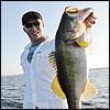 Fishing bass fishing tips Fly-tying Course